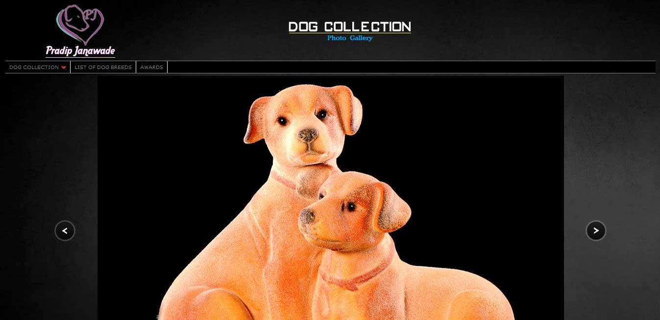 Pradip Janawade-Dog Collection